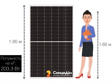 Сонячна панель Risen RSM132-6-375М